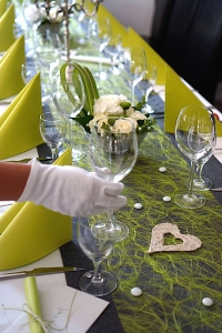 Hand grün Kopie